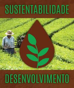 Sustentabilidade e Desenvolvimento